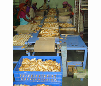 Bakery Products handling systems